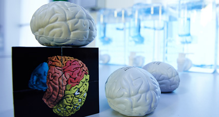 Center for Neuroscience Imaging Research (CNIR)